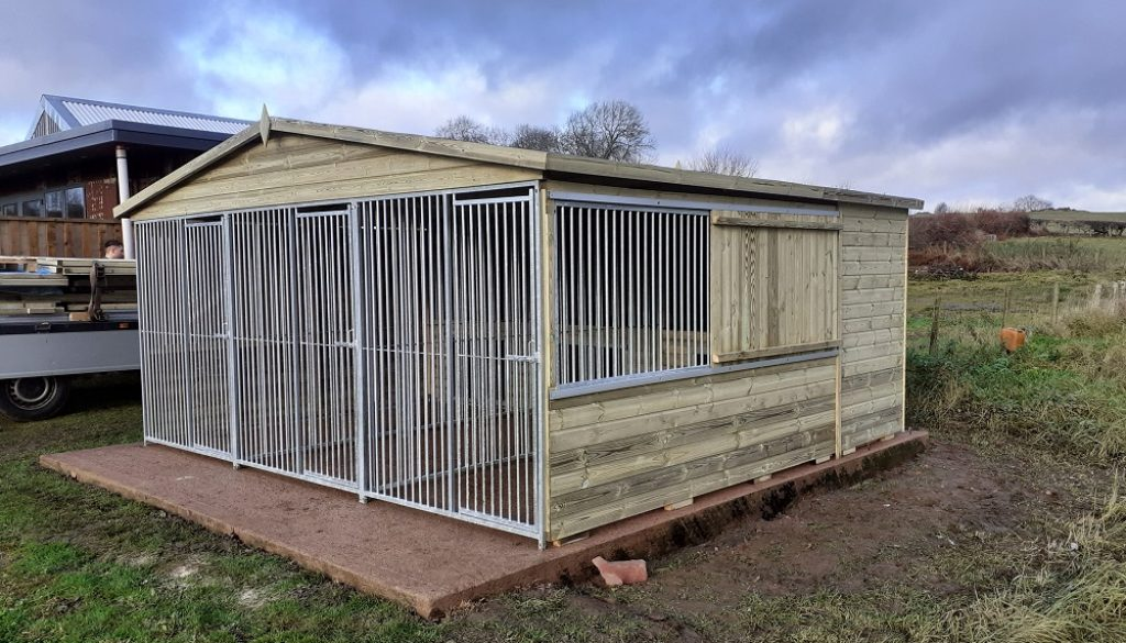Custom Triple Dog Kennel and Run With Sleeping Boxes