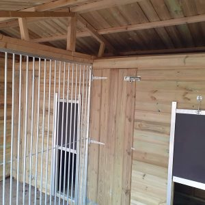 dog kennel and run block with side shed