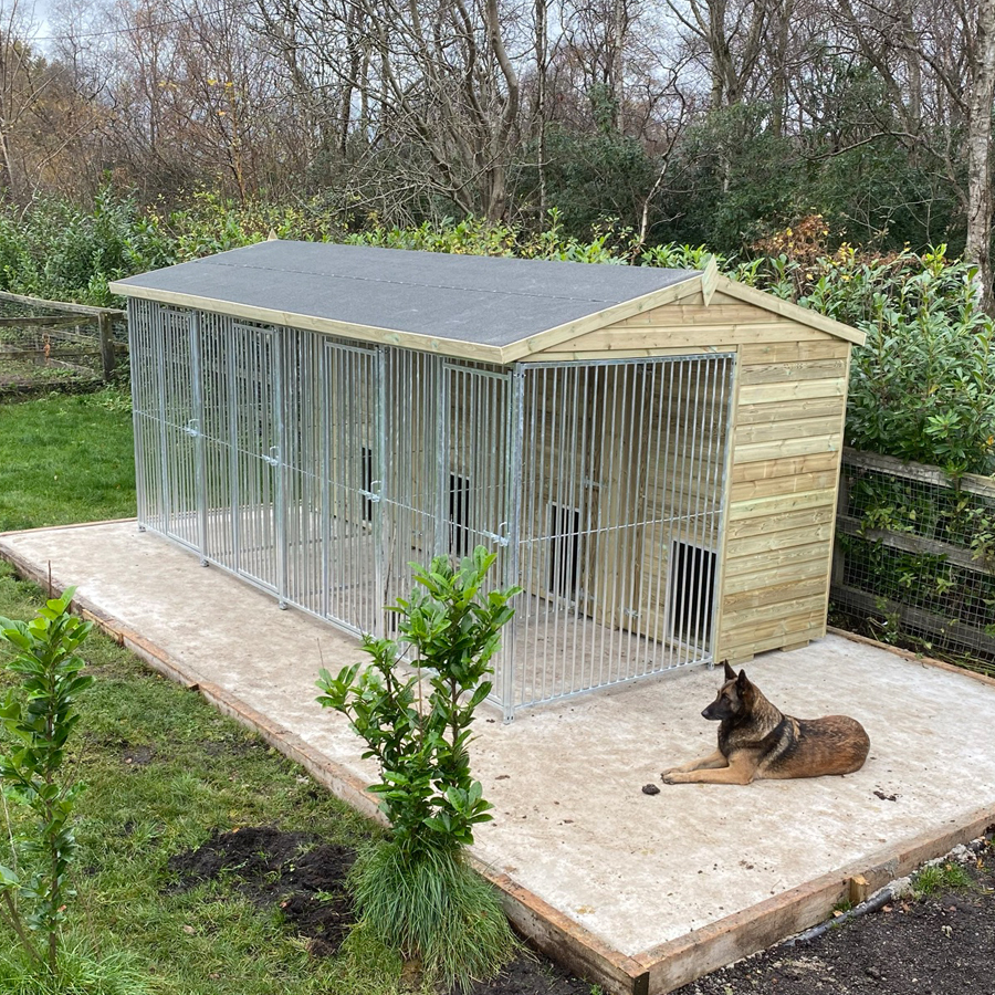 The benefits of an outdoor dog and kennel run for workings dogs